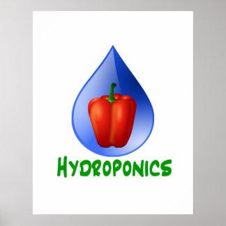Hydroponics, Bell Pepper, drop, green text Poster
