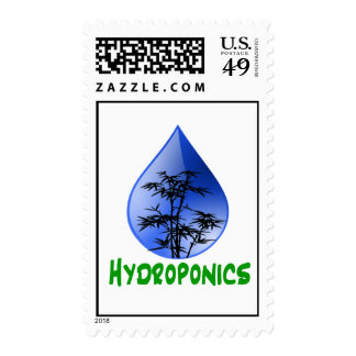 Hydroponics Black Bamboo Plant Green Text Postage