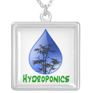 Hydroponics Black Bamboo Plant Green Text Square Pendant Necklace
