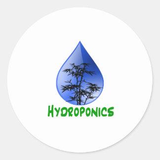 Hydroponics Black Bamboo Plant Green Text Stickers