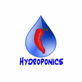 Hydroponics, chili pepper, blue text design cut out