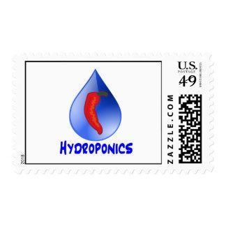 Hydroponics, chili pepper, blue text design postage stamp