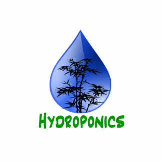 Hydroponics design-black bamboo photo cut outs