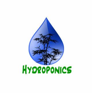 Hydroponics design-black bamboo photo sculpture