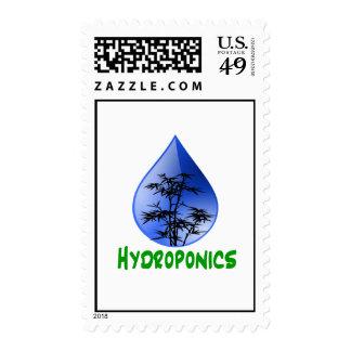 Hydroponics design-black bamboo postage