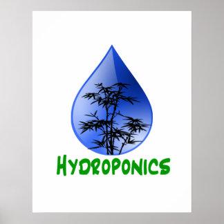 Hydroponics design-black bamboo poster
