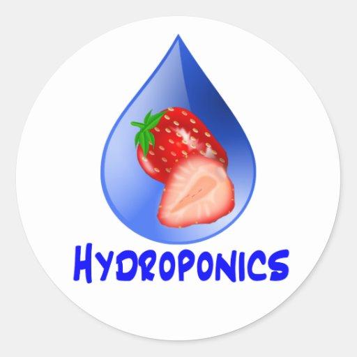 Hydroponics Design with strawberry Blue drop Classic Round Sticker