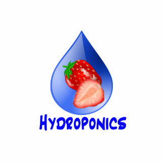 Hydroponics Design with strawberry Blue drop Cut Out