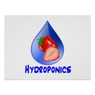 Hydroponics Design with strawberry Blue drop Poster