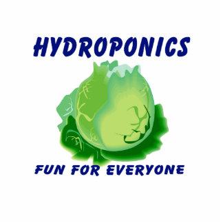 Hydroponics Fun For Everyone Lettuce Design Acrylic Cut Outs