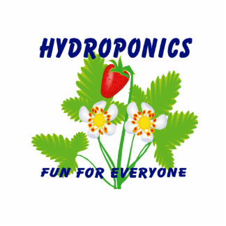 Hydroponics Fun For Everyone Strawberries Cut Out