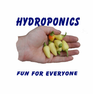 Hydroponics Fun White Habanero Peppers Hand Acrylic Cut Outs