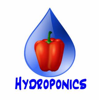 Hydroponics graphic, hydroponic pepper & drop photo cut outs