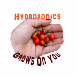 Hydroponics Grows on you Cascabel Pepper Acrylic Cut Outs