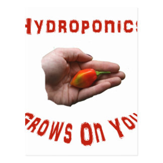 Hydroponics Grows on you Habanero Pepper Hand Postcard