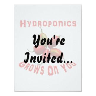 Hydroponics Grows On You habanero star Card