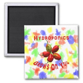 Hydroponics Grows On You habanero star Refrigerator Magnet