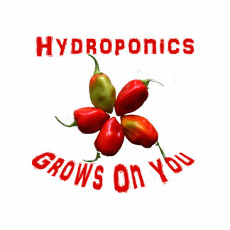 Hydroponics Grows On You habanero star Photo Cut Outs