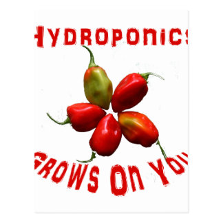 Hydroponics Grows On You habanero star Postcard
