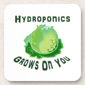 Hydroponics Grows On You Lettuce Beverage Coaster
