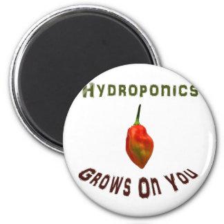 Hydroponics Grows On You Single Habanero Fridge Magnet