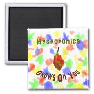 Hydroponics Grows On You Single Habanero Fridge Magnets