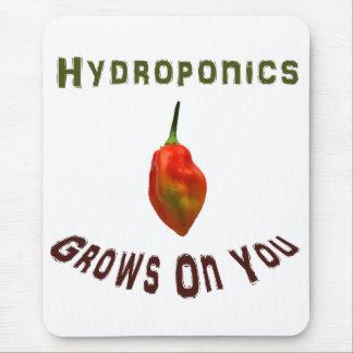 Hydroponics Grows On You Single Habanero Mouse Pad