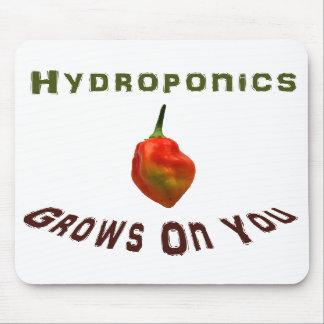 Hydroponics Grows On You Single Habanero Mousepads