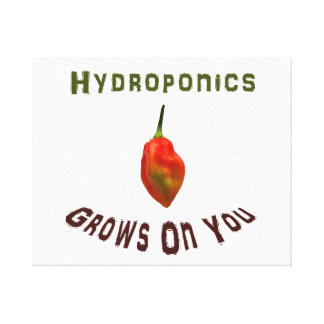 Hydroponics grows on you, single habanero pepper canvas print