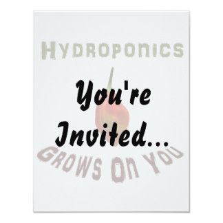 Hydroponics grows on you, single habanero pepper card