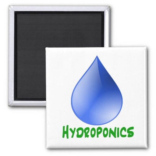 Hydroponics in green text with blue water drop fridge magnet