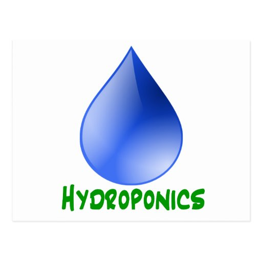 Hydroponics in green text with blue water drop postcard