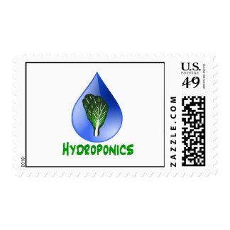 Hydroponics Leaf lettuce blue drop green text Stamps
