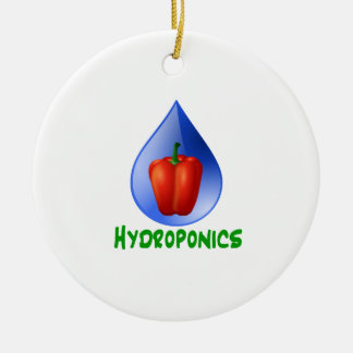 Hydroponics Red bell Pepper green text Double-Sided Ceramic Round Christmas Ornament