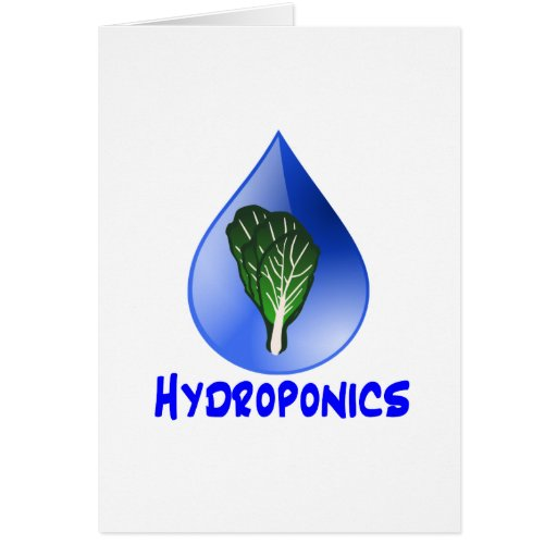 Hydroponics slogan Blue Drop with Lettuce graphic Stationery Note Card