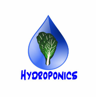 Hydroponics slogan Blue Drop with Lettuce graphic Photo Cut Out