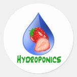 Hydroponics, strawberries, green text, blue drop classic round sticker