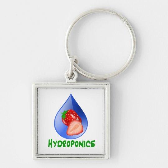 Hydroponics, strawberries, green text, blue drop keychain