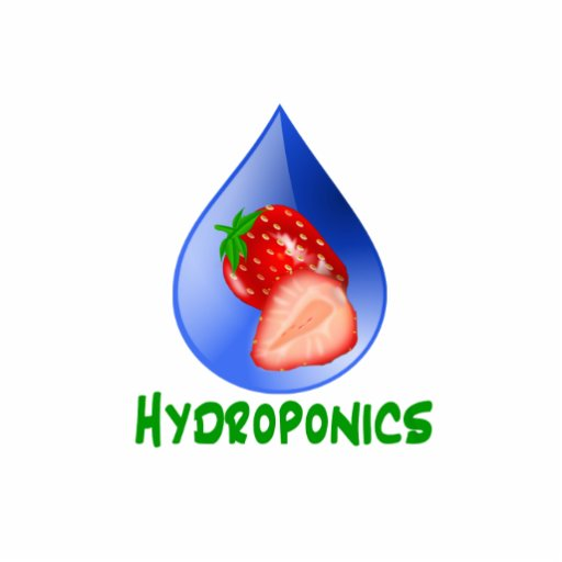 Hydroponics, strawberries, green text, blue drop photo sculpture button