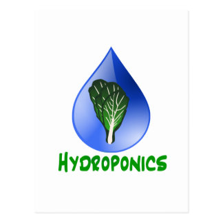 Hydroponics, water drop and lettuce Green text Postcard
