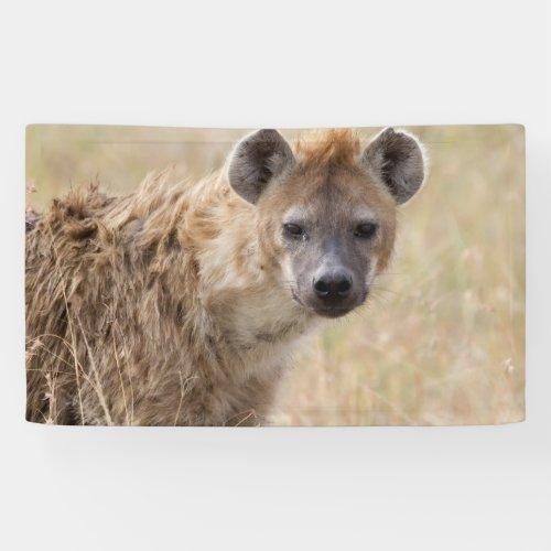 Hyena Banner