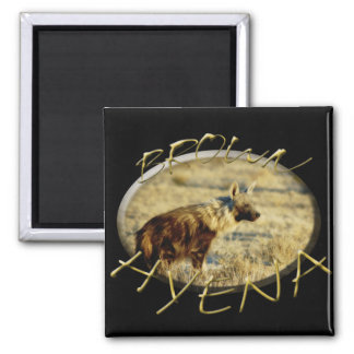 Hyena brown 2 inch square magnet