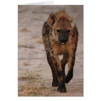 Hyena Card