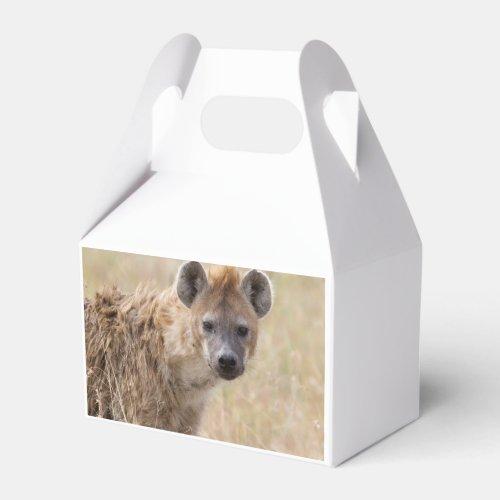 Hyena Favor Box