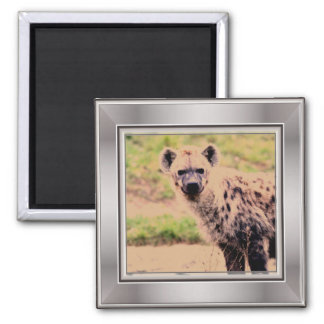 hyena 2 inch square magnet
