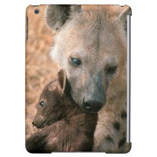 Hyena manchado (Crocuta del Crocuta) con el