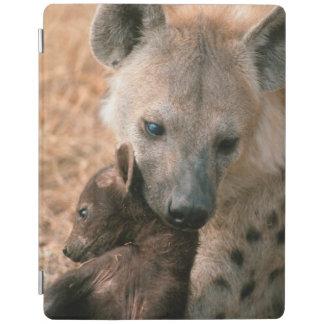 Hyena manchado (Crocuta del Crocuta) con el Cubierta De iPad