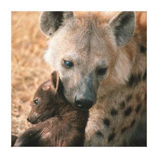 Hyena manchado (Crocuta del Crocuta) con el Impresión En Lienzo