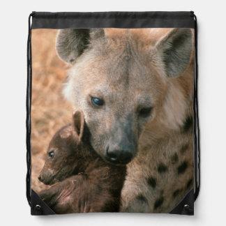 Hyena manchado (Crocuta del Crocuta) con el Mochilas