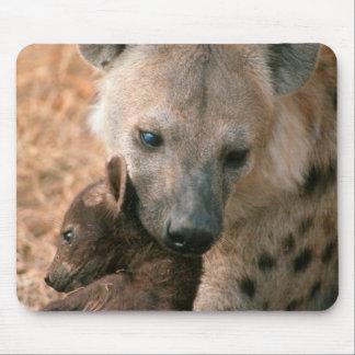 Hyena manchado (Crocuta del Crocuta) con el Mouse Pad